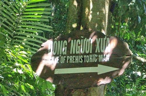 Du lịch Ninh Bình: Bái Đính, Tràng An, Cúc Phương ( 2 ngày 1 đêm )