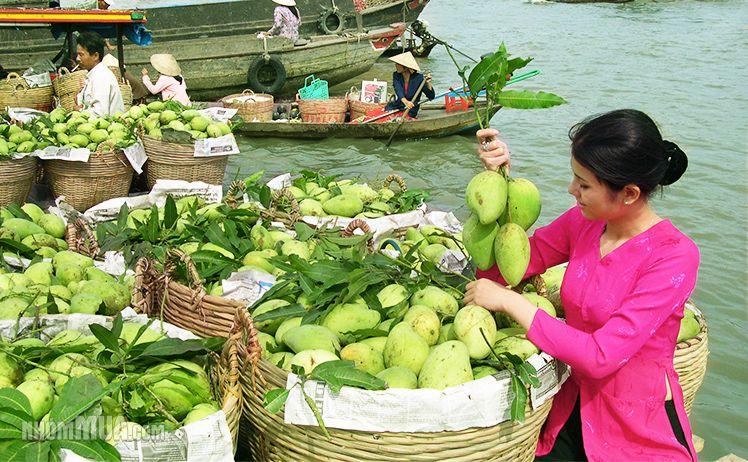 Tour Du Lịch Hà Nội - Miền Tây - Sài Gòn 6 Ngày 5 Đêm