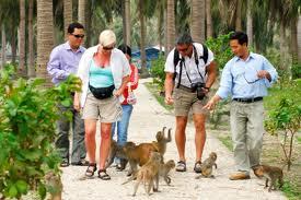 Tour Du Lịch Nha Trang (Vịnh Nha Phu - Đảo Khỉ ) 1 Ngày