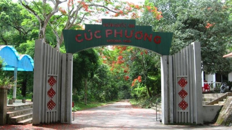 Du lịch Ninh Bình: Hoa Lư, Tam Cốc, Rừng Cúc Phương ( 2 ngày 1 đêm )