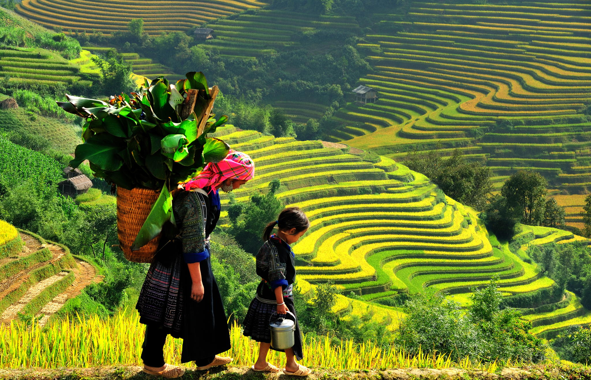 Sapa Trekking: Cat Cat - Ham Rong - Lao Chai - Ta Van 3 days 2 nights